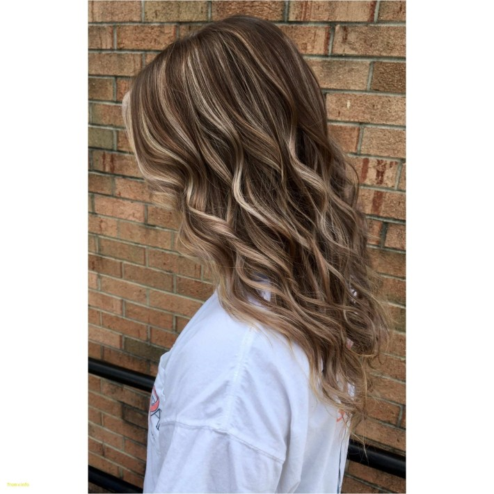 Hairstyles : Caramel Highlights Straight Hair Awe Inspiring in Very best Asian Hairstyles With Highlights