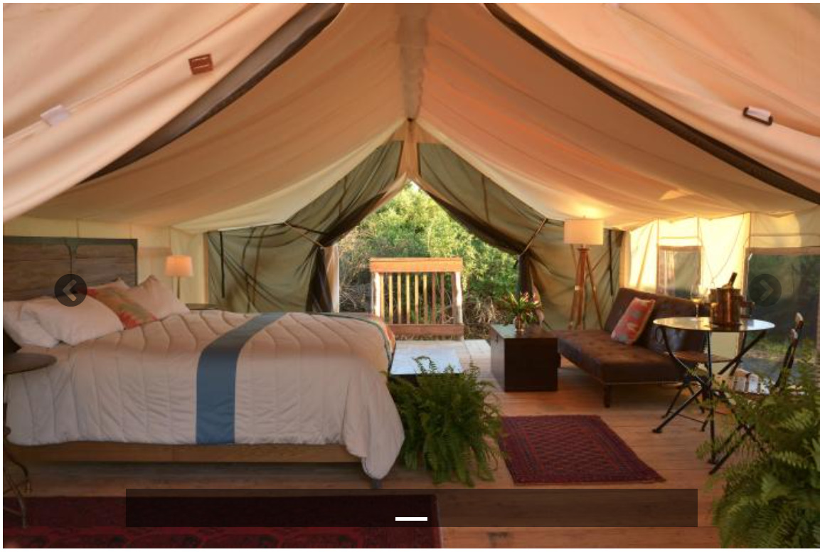 Read more about the article Probably'll need a Safari Hat (Glamping in July)