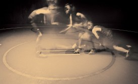 wrestlers 11