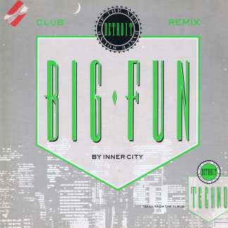 Inner City – Big Fun (Club Remix) - TENR 240 - 12-inch Vinyl Record