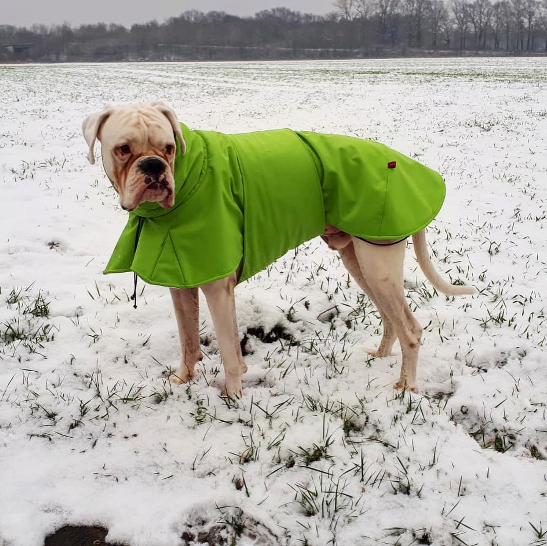 Hundemantel Modell Angus