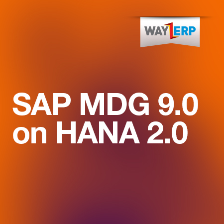 SAP MDG 9 0 On HANA 2 0 Remote Server Access - SAP Plug and Play Hard  Drives | SAP Remote Access | SAP Server Access