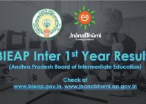 AP Inter 1st Year Result 2019 - www.bieap.gov.in, www.jnanabhumi.ap.gov.in, www.manabadi.co.in