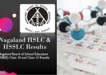Nagaland HSLC & HSSLC Results - 10th & 12th Class Marks Sheet