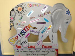Pinelodge Program Elephant