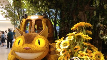 All aboard the Cat bus