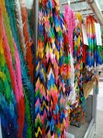 Close up of colorful cranes