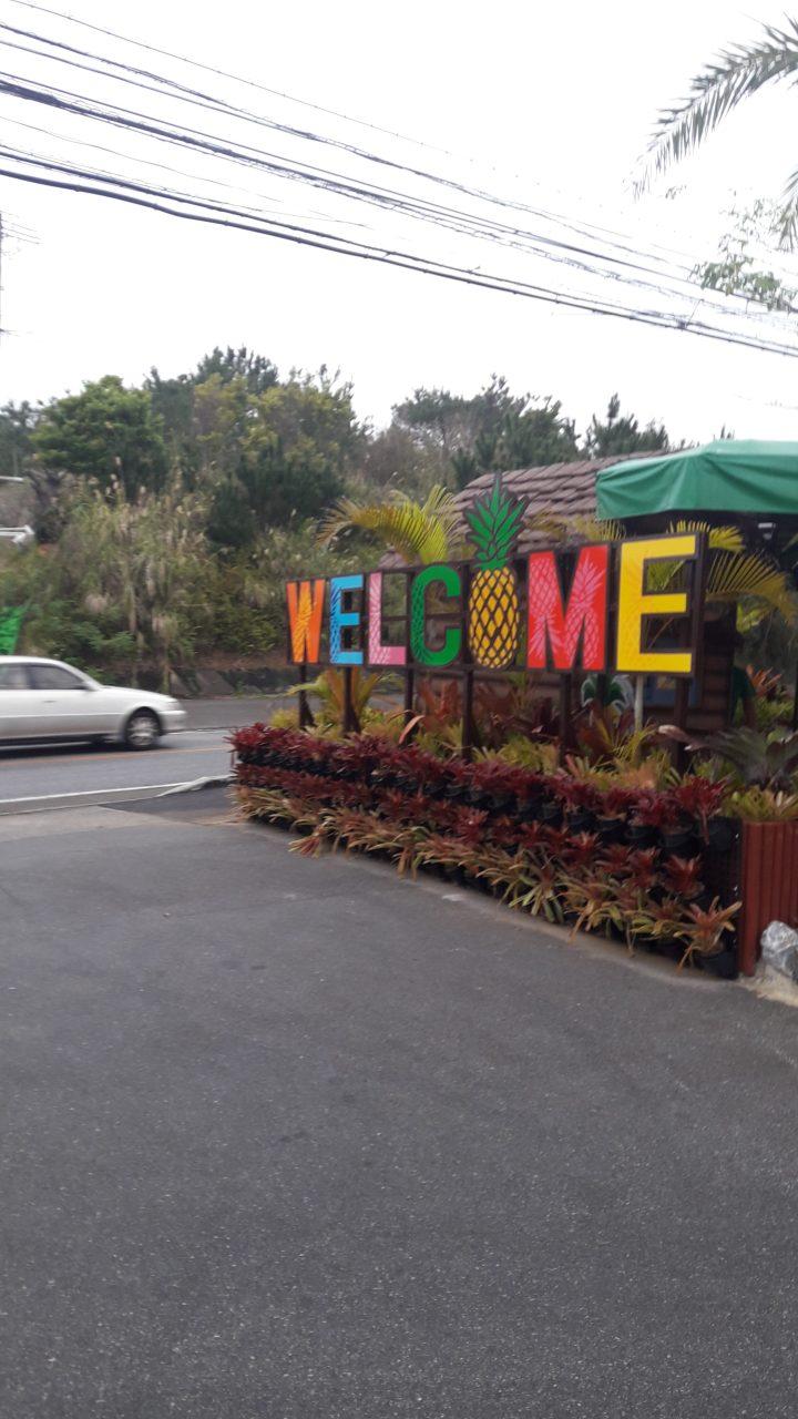 Nago Pineapple Park ナゴパイナップルパーク