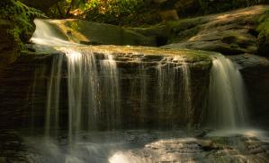 A close view of a wide but short waterfall in the middle of a forest