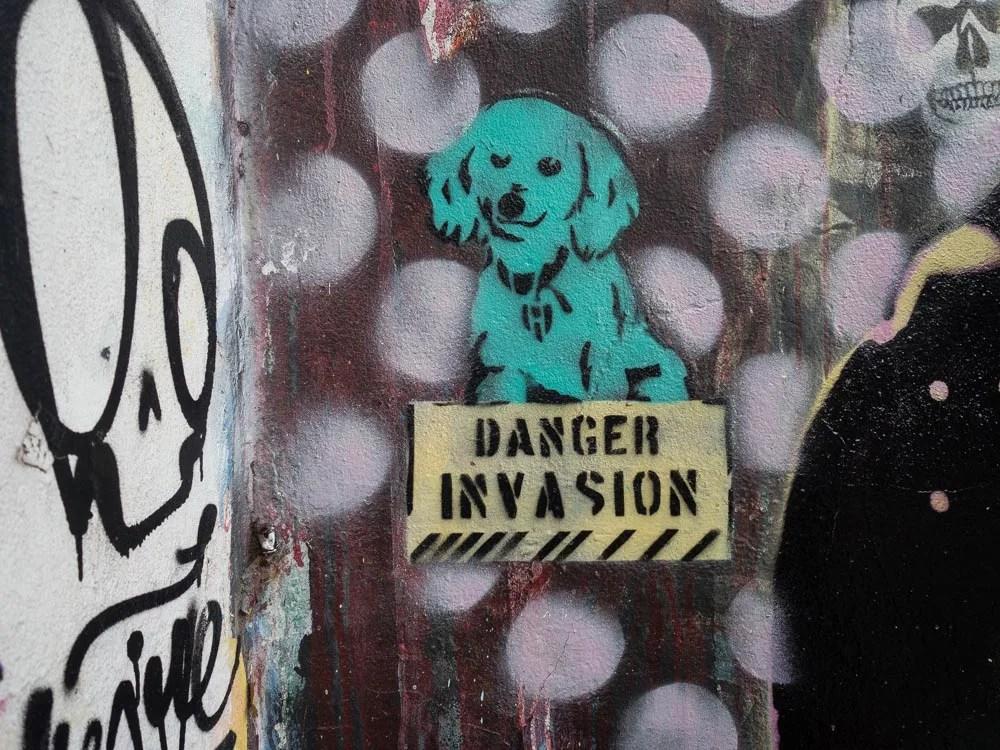 Buenos Aires Street Dog Stencil