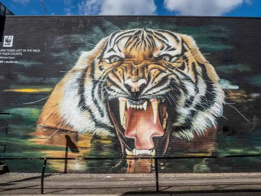 Shoreditch street art tiger by Graffiti Life
