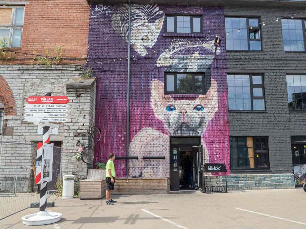 Tallinn Telliskivi Creative City purple Dog street art