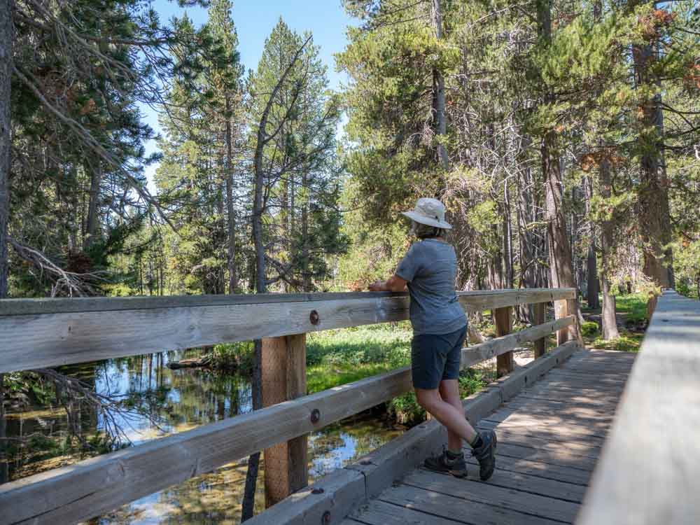 California El Dorado Forest hiker on bridge