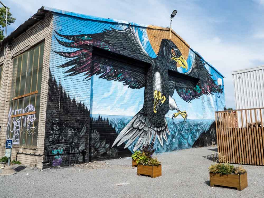 Tallinn street art mural endangered Estonian sea eagle by Cinzah Merkens