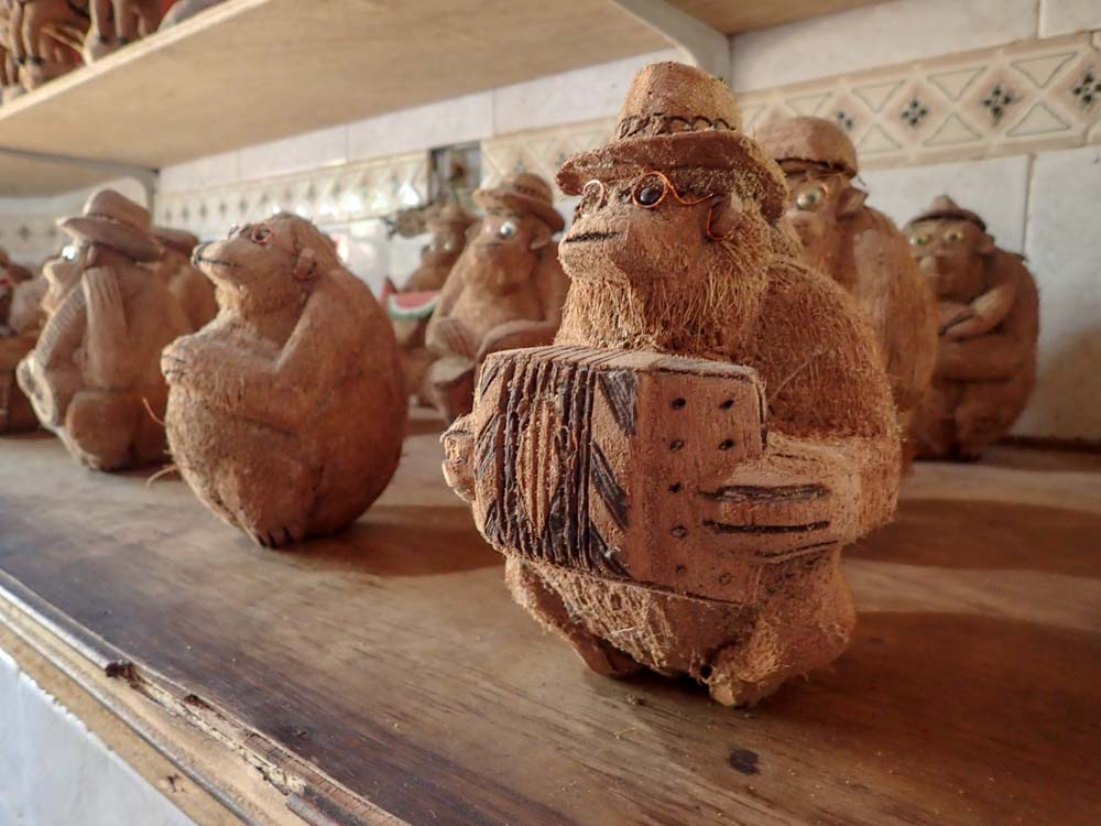 San Andrés Colombia Cueva Morgan coconut display
