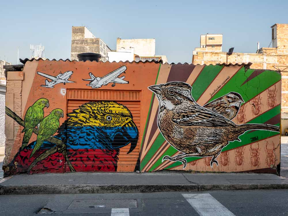 Collaborative mural in Bogota: lesivo and DJLU. Three parrots, airplanes and songbirds
