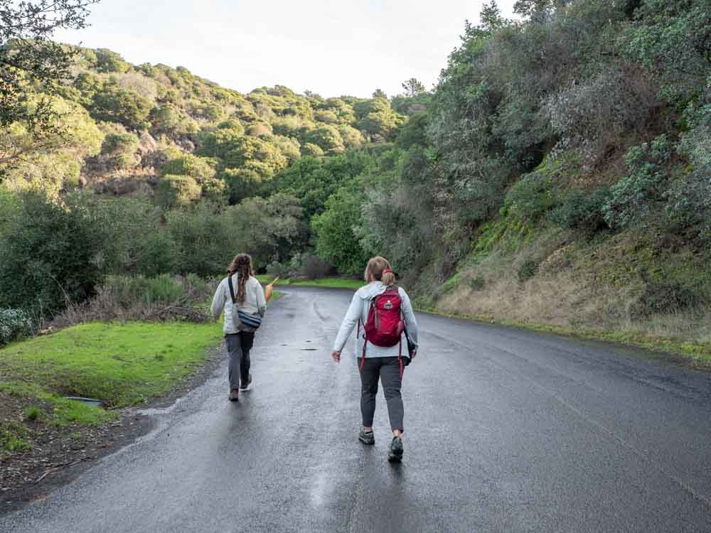 Things to do on Angel Island: hiking perimeter road