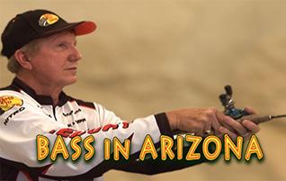 Bass Fishing in Arizona – Fishing Tips & Videos