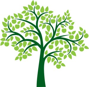 One-on-One Genealogy Help @ Wayland Library