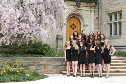 Yale's New Blue A Cappella.jpg