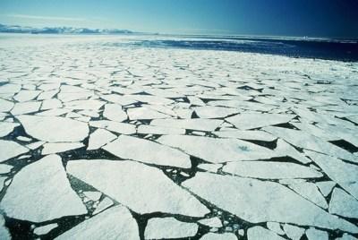Arctic sea ice,melt