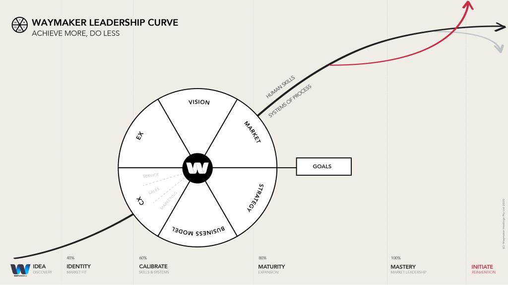 The 6 functions of growth on Waymaker's Leadership Curve