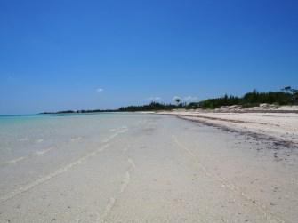 1006 6-May-2013-Fortuna-Beach-wayne (127)