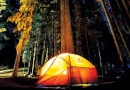 MANY DNR CAMPGROUNDS FULL, BUT PRIME OPTIONS REMAIN