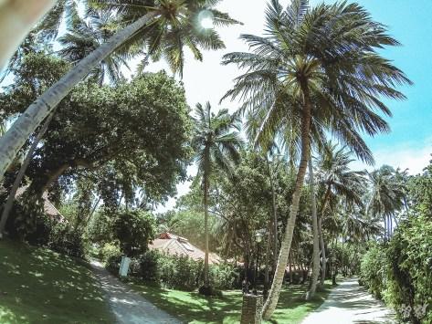 馬爾地夫卡尼島