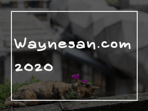 韋恩先生 WAYNESAN.COM 2020 年度回顧