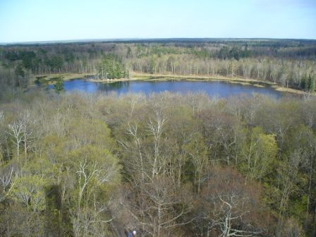 East from Aiton Heights Fire Tower