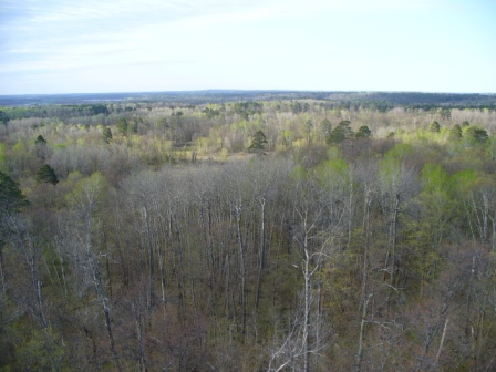 North from Aiton Heights Fire Tower