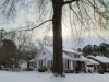snow-wendell-7667