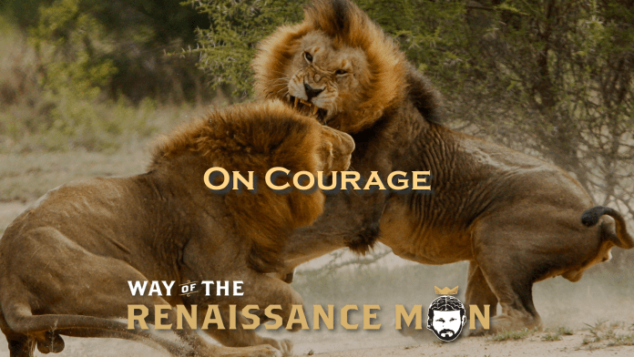 Ernest Hemingway On Courage Way of the Renaissance Man Starring Jim Woods