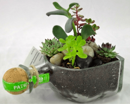 Wayome Upcycling bouteilles en contenant 2