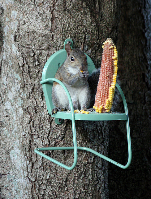 A miniature retro chair you can attach to trees for squirrels to lounge on.