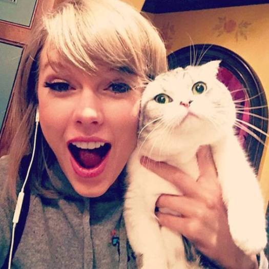 taylor_swift_doppelganger_13