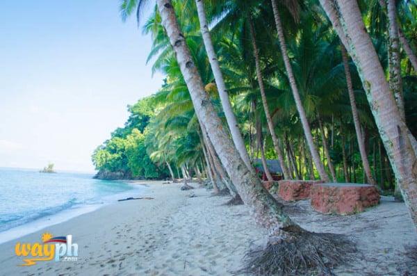 tuka Beach Resort (4)