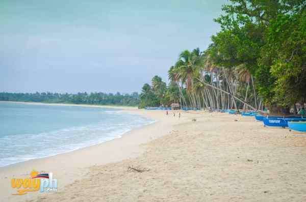 Saud Beach Resort