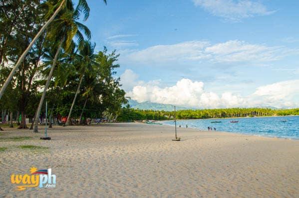 Dahican Beach Resort (5)