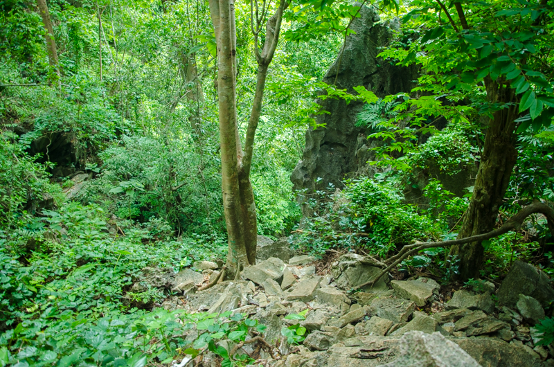 El-Nido-taraw-cliff-9945