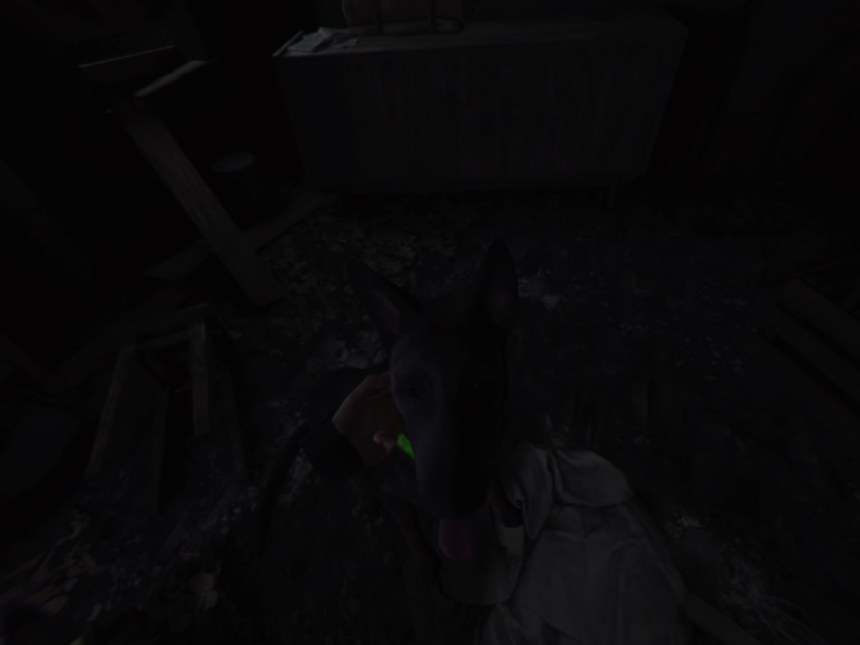 Blair Witch: VR Edition Bullet