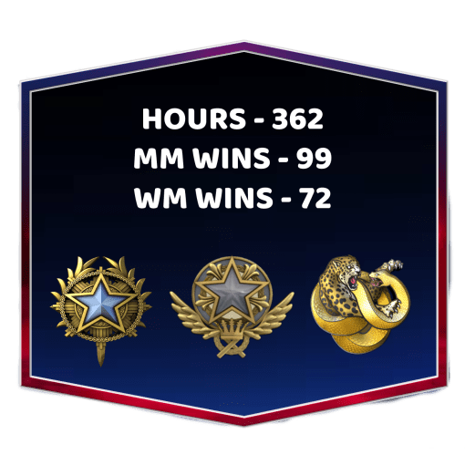 2 Medals CSGO Smurf Account With Broken Fang Diamond Coin
