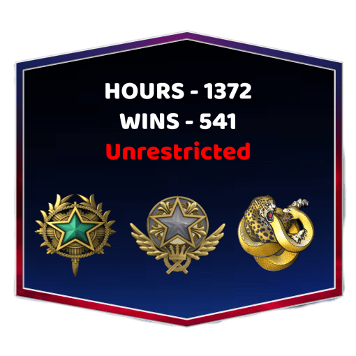 2 Medals Unrestricted CSGO Account