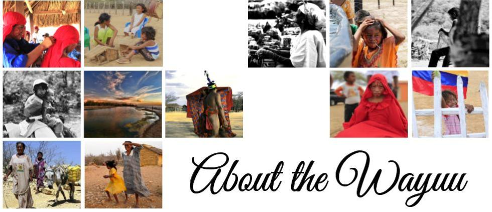 Wayuu People Wayuu Bag