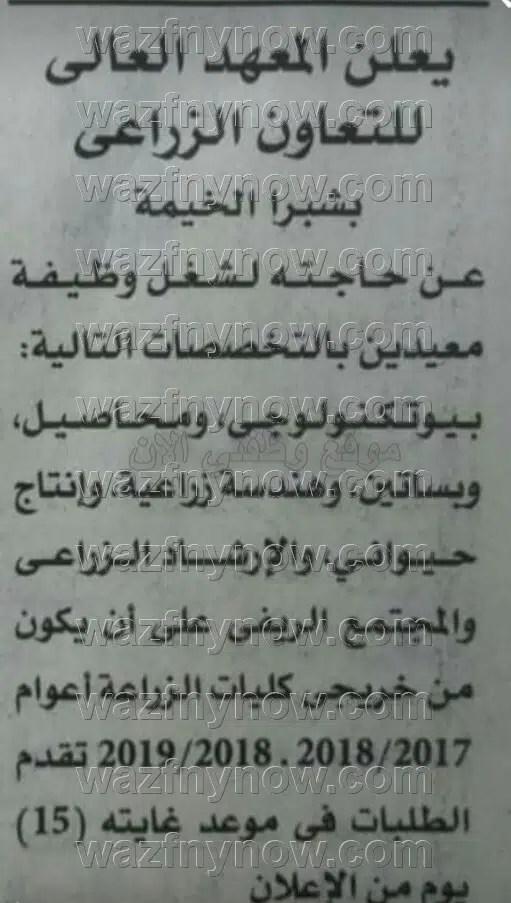 اعلان ظائف المعهد العالي للتعاون الزراعي بشبرا الخيمة