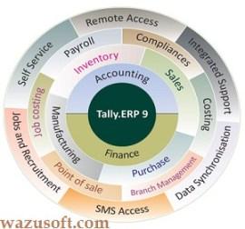 Tally ERP Crack 2022 wazusoft.com