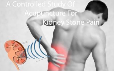 kd stone study - Blog