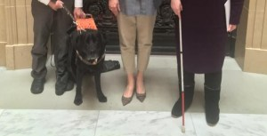 Three people's legs and feet with a white cane and a service dog.