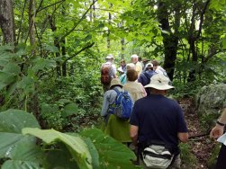 Trail Discussion
